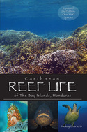 Caribbean Diving Books
