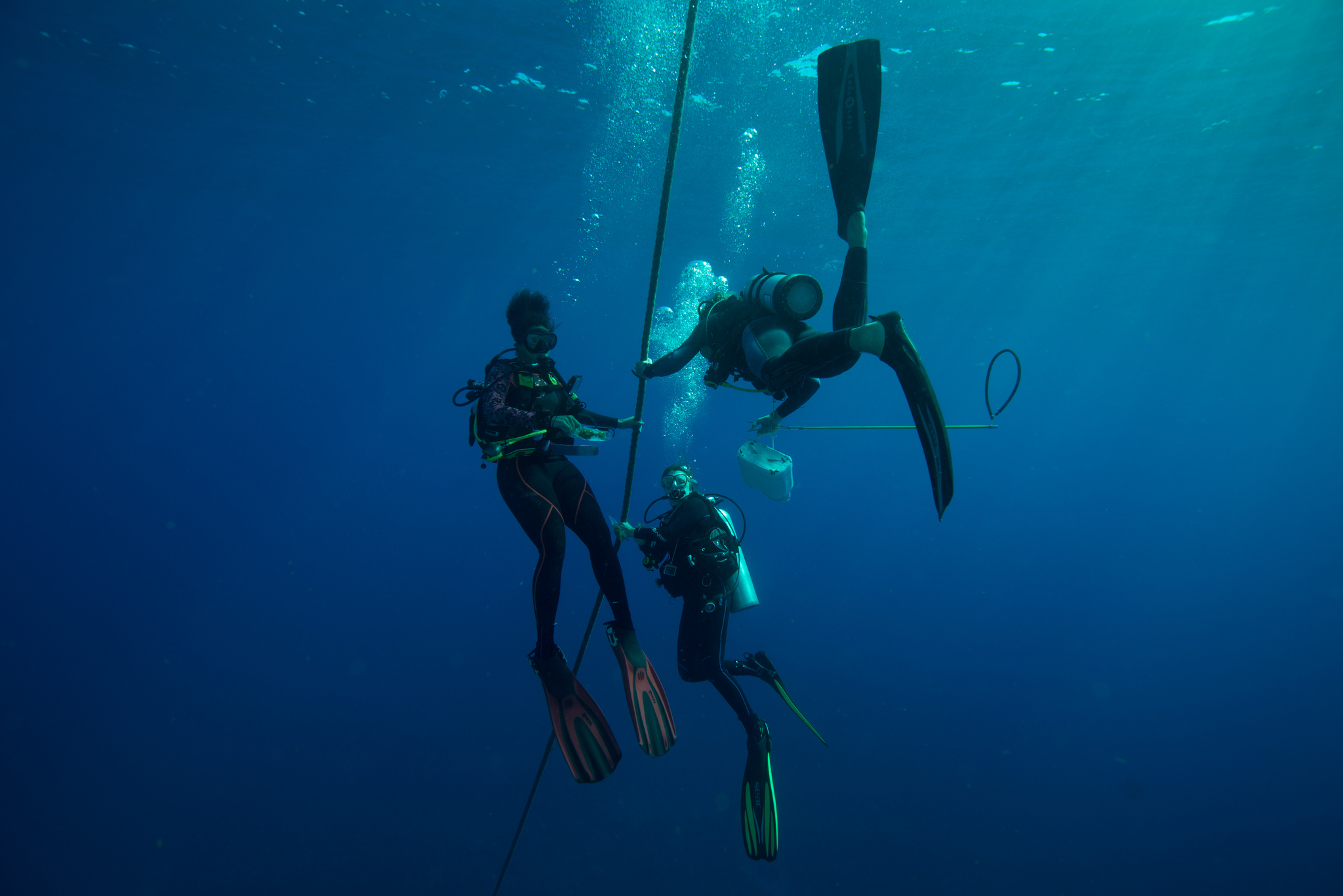 scuba diving st eustatius