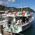 Scuba Diving St Lucia : Fair Helen