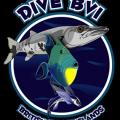 Dive BVI