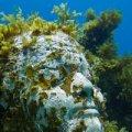 Carey Dive Isla Mujeres