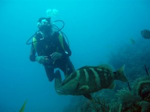Cuba…the best destination for diving