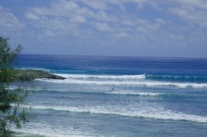 Barbados Surfing Hangout