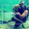 Diving in Hol Chan and Shark Alley in Belize